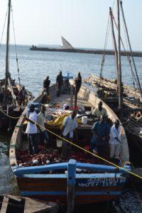 タンザニア風景船